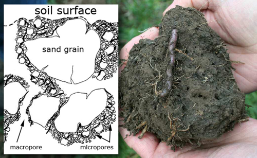 Related keywords suggestions for soil aggregates for Soil structure